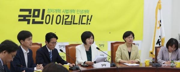 27일 서울 여의도 국회에서 열린 정의당 상무위원회에서 이정미 대표가 모두발언하고 있다.  / tkwls = sbtltm
