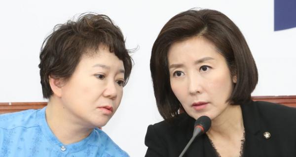 자유한국당 정미경 최고위원 / 사진 뉴시스