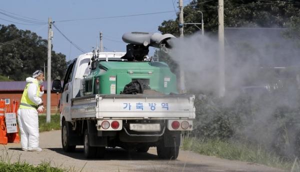 연천 돼지열병 발생 농장 인근 소독 작업 / 사진 = 뉴시스
