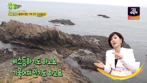 ⒸKBS 2TV 교양프로그램 '생생정보' 화면 캡처
